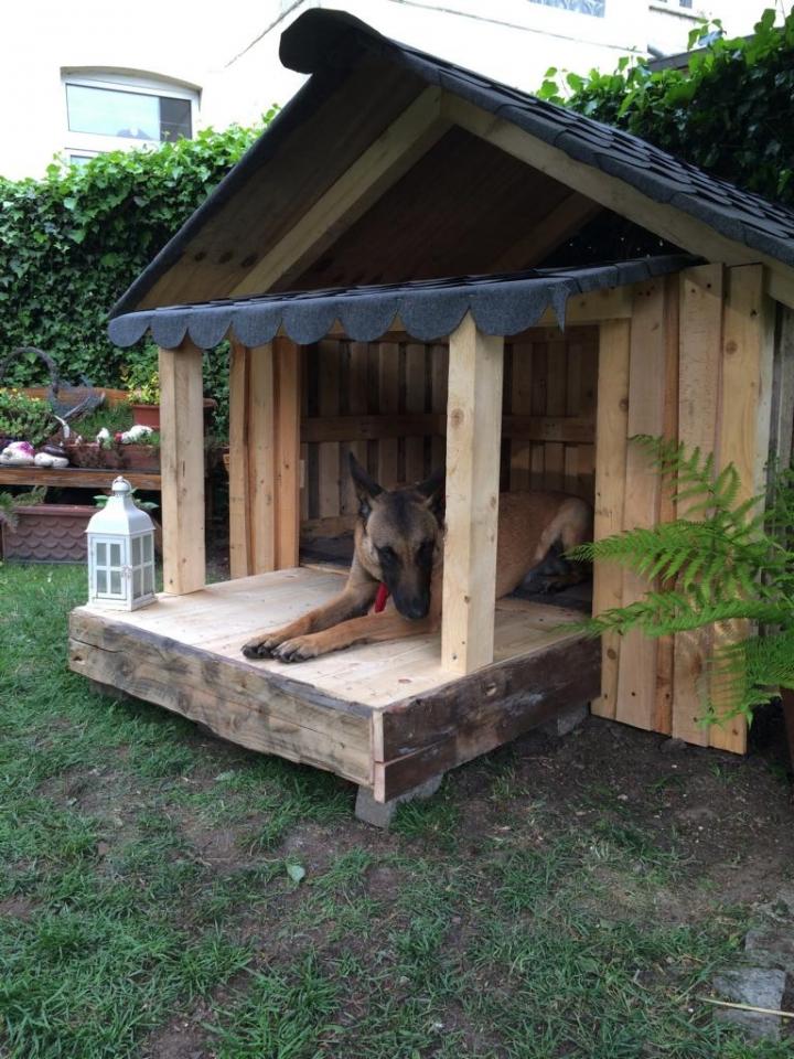 Hundehutte Aus Einwegpaletten Bauanleitung Zum Selberbauen 1 2