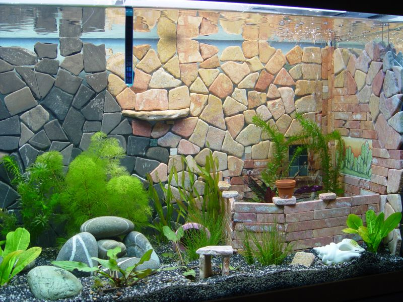 aquarium steine selber bauen aquarien d r ckwand selber machen youtube image result for. Black Bedroom Furniture Sets. Home Design Ideas