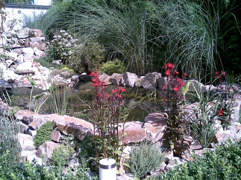 Bau Eines Gartenteichs Mit Wasserfall Und Bachlauf   Bauanleitung Zum  Selberbauen   1 2 Do.com   Deine Heimwerker Community