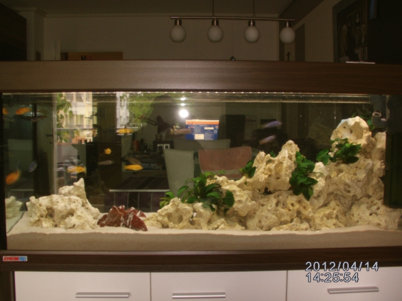 aquarium als raumteiler bauanleitung zum selberbauen 1 2 deine heimwerker community. Black Bedroom Furniture Sets. Home Design Ideas