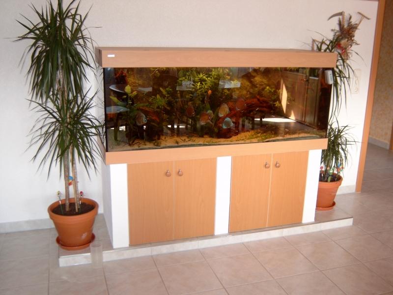 Gemauerter Unterbau Fürs Aquarium Bauanleitung Zum Selberbauen 1