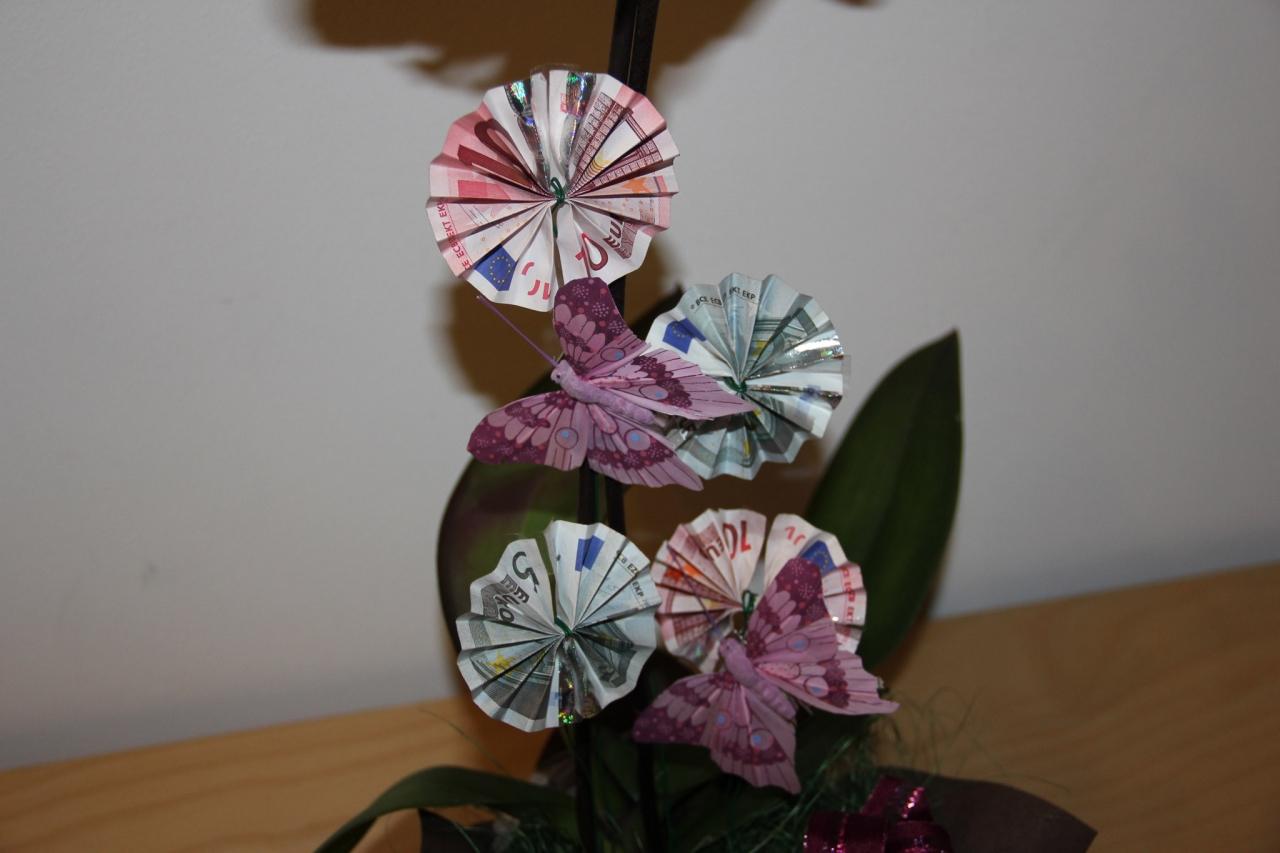 Orchidee Mit Eurobluten Geldgeschenk Geburtstagsgeschenk