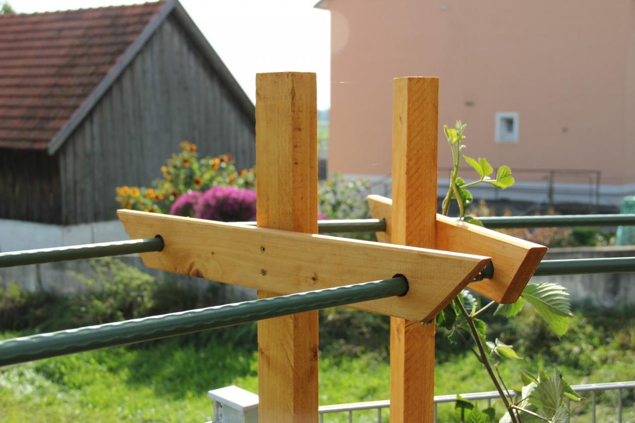 Klettergerüst Für Brombeeren : Rankhilfe pergola für himbeeren und brombeeren bauanleitung zum